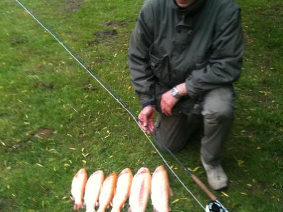 Fliegenfischen Anglers Ruh Coesfeld