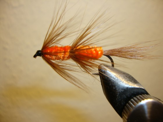 Red Setter NZ-Streamer